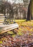 Autumn park theme with bench stock photography