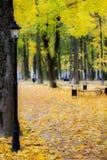 Autumn Park. Autumn time in a city parkn Stock Photos