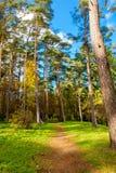Autumn Park. Toila, Estonia, Europe Royalty Free Stock Images