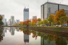 Autumn in the park of Tokyo Royalty Free Stock Photo