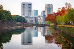 Autumn in the park of Tokyo Stock Photos