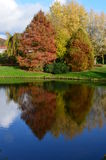Autumn park Stock Photography