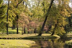 Autumn park with trees and river. Autumn yellow park with trees and river stock image
