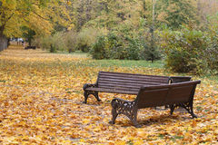 Autumn park Royalty Free Stock Photos