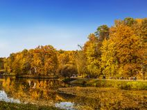 Autumn Park in Tsaritsyno Museum-reserve, Moscow. Russia royalty free stock photography