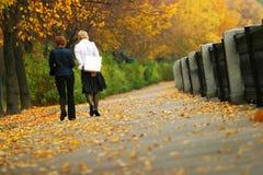 Autumn park Royalty Free Stock Image