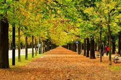 Autumn park in Vienna, Austria. Royalty Free Stock Image