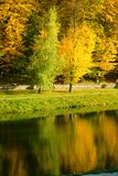 Autumn in the park. Yellow and green trees in the park Royalty Free Stock Image