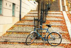 Autumn parking. This bicycle was parking below stairs and looked very nice in the autumn leaves Royalty Free Stock Photography
