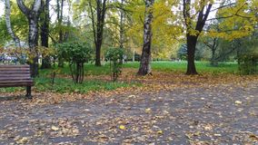 Autumn part. It is Pobeda Park in Tver, Centralny District. It is autumn, leaf fall. Nice colourful trees, the alley and the bench. Nice weather Royalty Free Stock Image