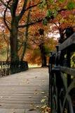 Autumn passage. Iron bridge and autumn trees Stock Photography