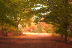 Autumn pastels. Early autumn with pastel colors through a passage Stock Image