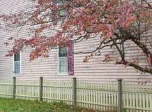 Autumn Pastels Stock Photo