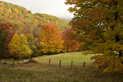 Autumn Pasture And Fence Royalty Free Stock Photo
