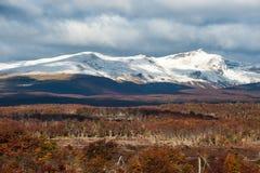 Autumn in Patagonia. Cordillera Darwin, Tierra del Fuego. Autumn in Patagonia. Cordillera Darwin, part of Andes range, Isla Grande de Tierra del Fuego, Chilean Royalty Free Stock Photo