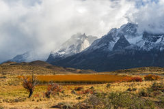 Autumn in Patagonia. The Torres del Paine Stock Photo