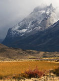 Autumn in Patagonia. Torres del Paine Stock Photography
