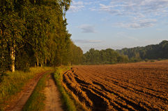 Autumn path. Autumn landscape with ploughed filed and path alongside treeline Royalty Free Stock Image