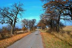 Autumn Path Stockfoto