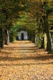 Autumn Path Fotografering för Bildbyråer