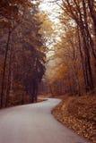 Autumn Path Lizenzfreies Stockbild