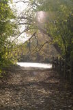 Autumn path. Stock Photography