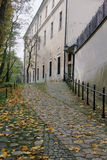 Autumn path in Krakow Stock Photo