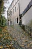 Autumn path in Krakow Stock Photo