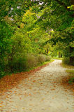 Autumn path. Multicolor forest leaves and walking path. Autumn landscape.  Romantic fall trail Royalty Free Stock Photos
