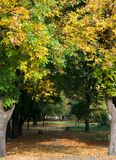 Autumn path. In the park Royalty Free Stock Photos