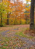 Autumn path - Pennsylvania Royalty Free Stock Photography