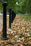 Autumn pathway Royalty Free Stock Photography