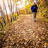 Autumn Pathway fotos de stock