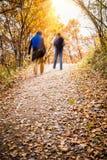 Autumn Pathway imagens de stock
