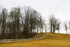 Autumn Pathway Foto de archivo