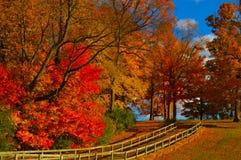Autumn Pathway Imágenes de archivo libres de regalías