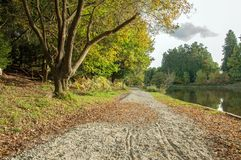Autumn Pathway Among`st The Trees In The English Countryside. Stock Photo