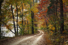Autumn Pathway Royalty Free Stock Photos
