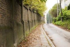 Autumn pathway Royalty Free Stock Photo