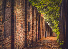 Autumn pathway Royalty Free Stock Images