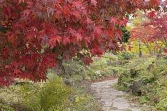 An autumn pathway, Southampton stock photos