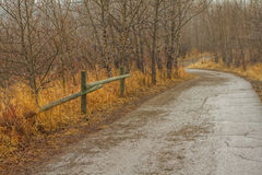 Autumn Pathway. Tree lined pathway in autumn Stock Photography