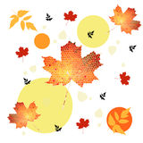 Autumn Pattern Foto de archivo