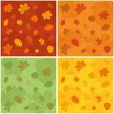 Autumn Pattern Stockbild
