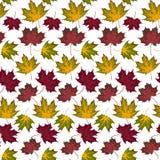 Autumn Pattern Fotografia Stock