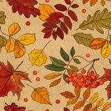 Autumn Pattern Imágenes de archivo libres de regalías