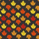 Autumn Pattern Fotografía de archivo libre de regalías