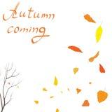 Autumn Pattern Fotografia Stock Libera da Diritti