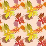 Autumn pattern. For autumn decor Royalty Free Stock Images