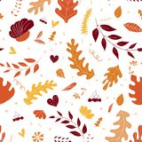 Autumn pattern background. Colorful leaves isolated on a white background. stock photos